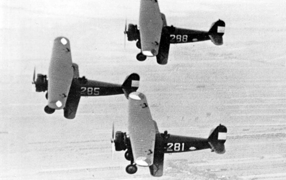 Formation of Fokker D.16 fighters of the L.V.A.